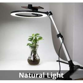 Cell Phone Stander with LED Ring Light